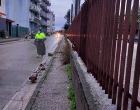 FOTOGALLERY — Diserbo espazzamento manuale: intervento sulla Sannitica enelle strade limitrofe